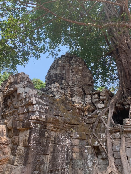 2020-03-12 Angkor tour sourire fromager - 1